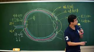 三元107年驗光專技考後解析-眼球結構(上)王靖老師
