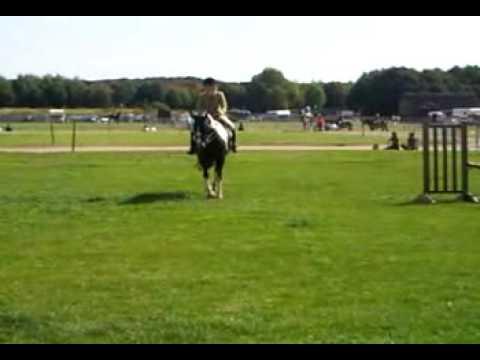 Boston Utility Horse Class Equifest 09