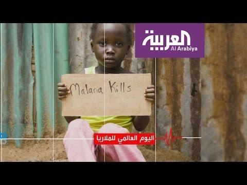 صحتك .. اليوم العالمي للملاريا  - نشر قبل 2 ساعة