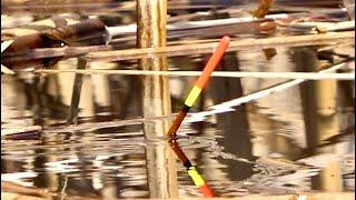 Рыбалка как в детстве Поплавок