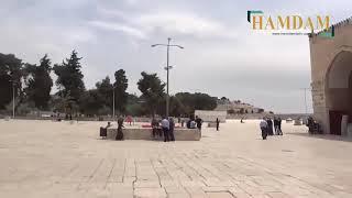 full HD video inside masjid al aqsa