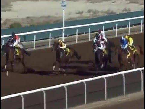 Jebel Ali Racecourse, 8 Jan 2016 Race 3 Jebel Ali Mile Prep Sponsored By Arabian Scandinavian I