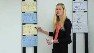 riemann habilitation dissertation