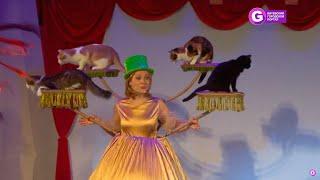 Театр кошек Куклачева в Витебске 2019
