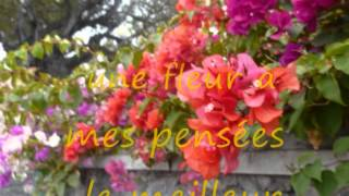 """Poème """"Fleur de vie"""" """"Flower of Life"""" - Musique : KITARO - SPIRITUAL GARDEN"""