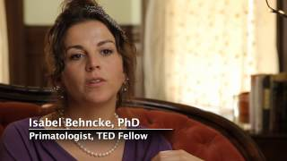 TED Fellow, Isabel Behncke: Play Unleashes Best Qualities Video
