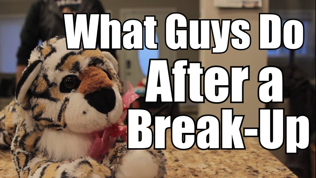 The Science of Men s Behaviour after a Break Up