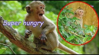 BREAKING HEART see poor baby Janet cry temper request food   Pity Janet cry \u0026 cry cuz starving much