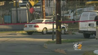 Investigation Into Stolen Car Chase, Shootout Continues