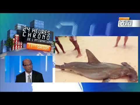 Ile Maurice - Focus Port Louis le 17 janvier 2017 à 16h00