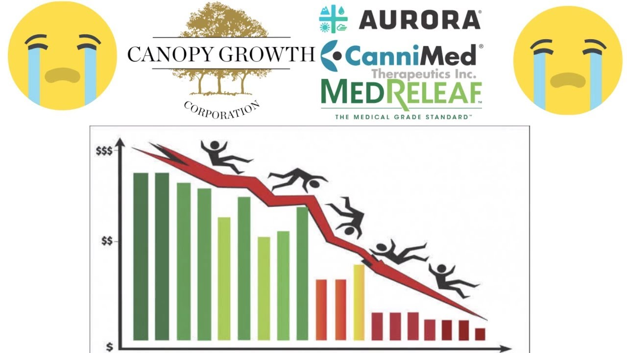 Aurora And Canopy Finally Has A Correction In Stock Price Youtube