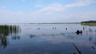 Рыбалка на волге На Чебоксарском водохранилище Моя любимая обловила меня