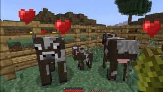 [1.2.5 NEWS]Rozmnażanie zwierząt