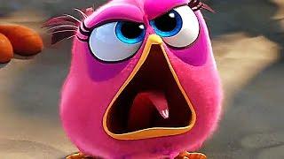 Angry Birds Movie Trailer 3 (2016) Jason Sudeikis, Peter Dinklage Comedy Movie HD