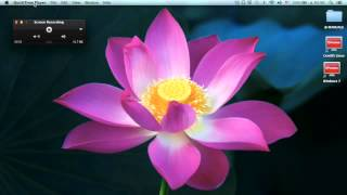 How to Pause QuickTime Player Screen Recording of your Mac
