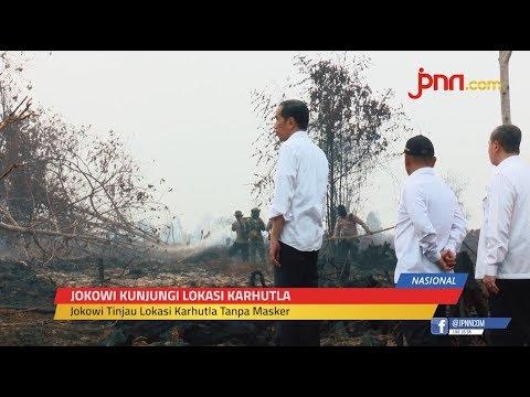 Blusukan ke Lokasi Karhutla Tanpa Mengenakan Masker, Jokowi: Besar Sekali
