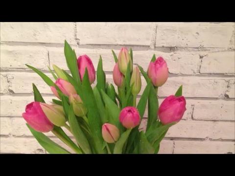 5 Советов Как Сохранить Срезанные Тюльпаны В Вазе подольше + Что с ними стало через 7 дней