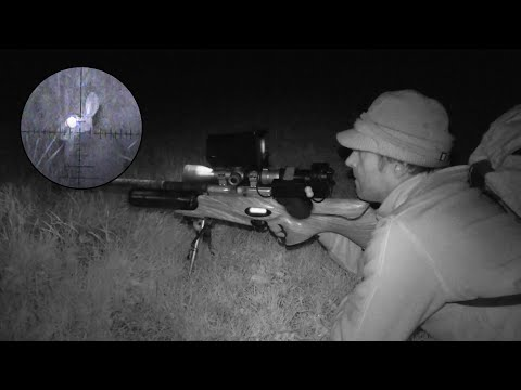 The Airgun Show – Night Vision Rabbit Hunt, PLUS Pellpax Rabbit Sniper MKII Kit On Test…
