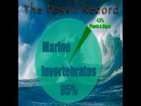 Earth History and the Record of the Rocks whit Don patton,Ph.D.(absolute proof for creation)