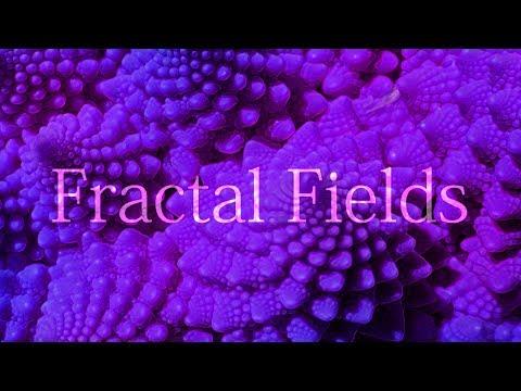 Fractal Fields