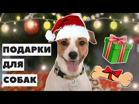 Новогодние подарки 2018 год собаки своими руками