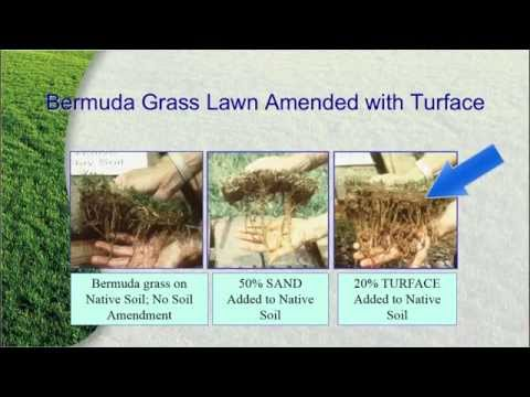 Building a Better Soil Structure with Turface