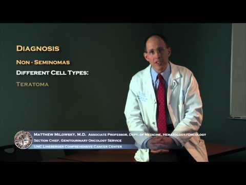 4-testicular-cancer-diagnosis