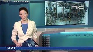 В Ялуторовске появится около сотни новых рабочих мест