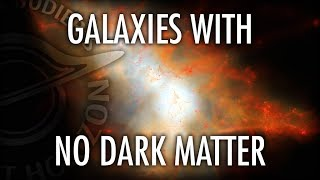 Do Galaxies with No Dark Matter Prove it Exists? Featuring Shany Danieli