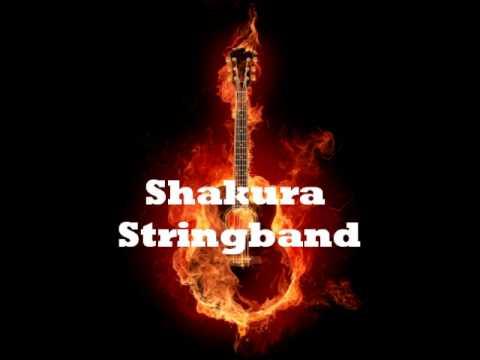 Shakura - Sina ( Vanuatu Contemporary Stringband)