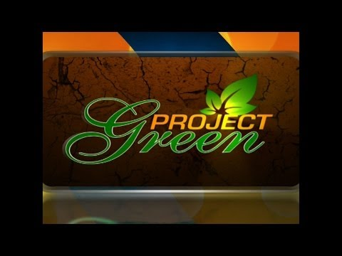 Project Green Episode 4 - Food Waste