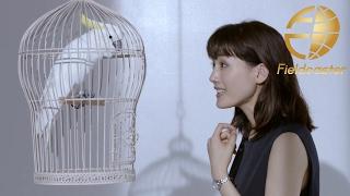 女性向け時計のブランドセイコー・ルキアのWEB限定ムービー「Seiko Lukia 2017 SS キバタン編」が公開されました。イメージキャラクターは女優・綾瀬はるかさんで、今回の ...