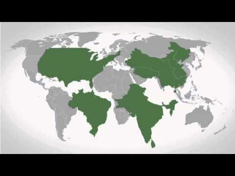 Desigualdad de la riqueza en el mundo