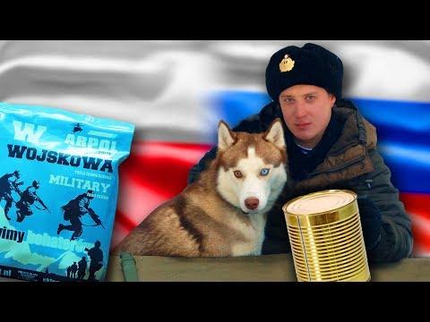 ОБЗОР ИРП Польши