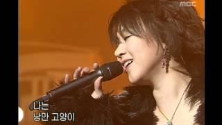 음악캠프 - Cherry Filter - Romantic cat, 체리필터 - 낭만 고양이, Music Camp 20021228