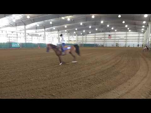 2018 Lancaster County Super Fair - 4-H Western Horse Show 2