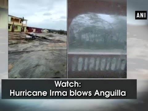Watch: Hurricane Irma blows Anguilla - ANI News