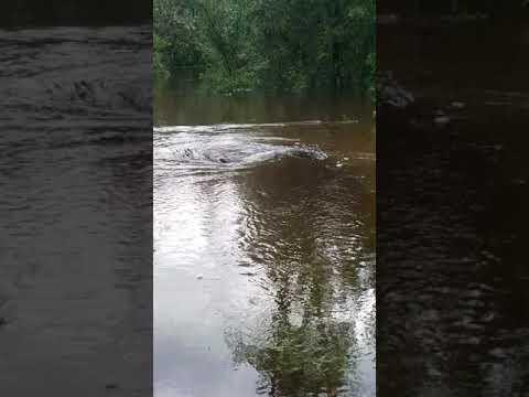 Hurricane Florence Whirlpool