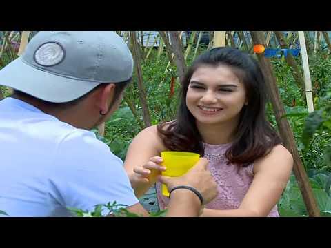 Opening Rahmat Cinta SCTV