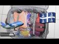 On fait ma valise ensemble ? (ce que j'emporte en Martinique) 🍒