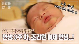 슬기로운 조리원생활 2편ㅣ생후 3주신생아의 일상ㅣ성장일…