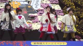 弘前城菊と紅葉まつり りんご娘ライブ から「焼きりんご」です。 200...