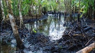 US Supreme Court Declines to Hear Chevron Pollution Case
