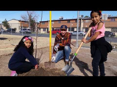 Quannah McCall Elementary School Garden Build