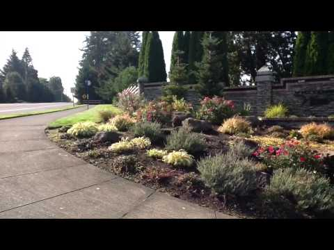 A Tour Of Victoria Woods And Tualatin Commons In Tualatin, Oregon