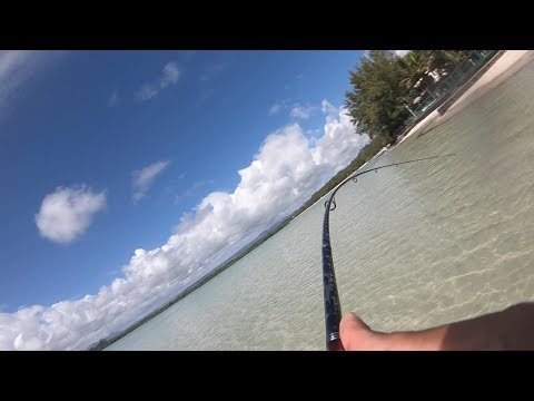 Ep#2- Shore Casting At Rocky Places-(Fishing In Mauritius)