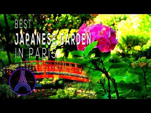 The Best Japanese Garden In Paris I The Dream Of A Banker I Albert Kahn Museum and Gardens