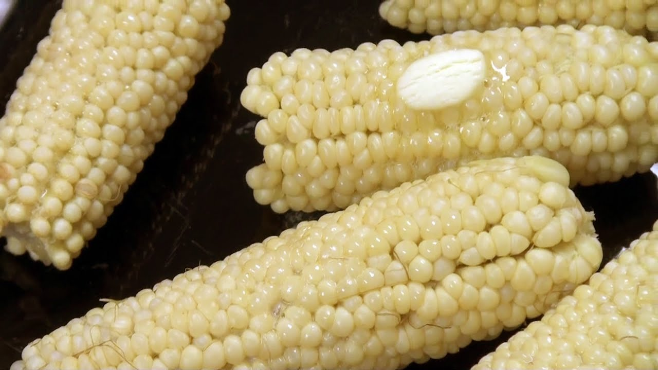 When and how to pick cook and eat sweet corn youtube when and how to pick cook and eat sweet corn ccuart Choice Image