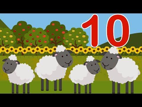 Вчимося рахувати до 10 | Вивчаємо цифри з малятами | Трактор везе овечок на ферму