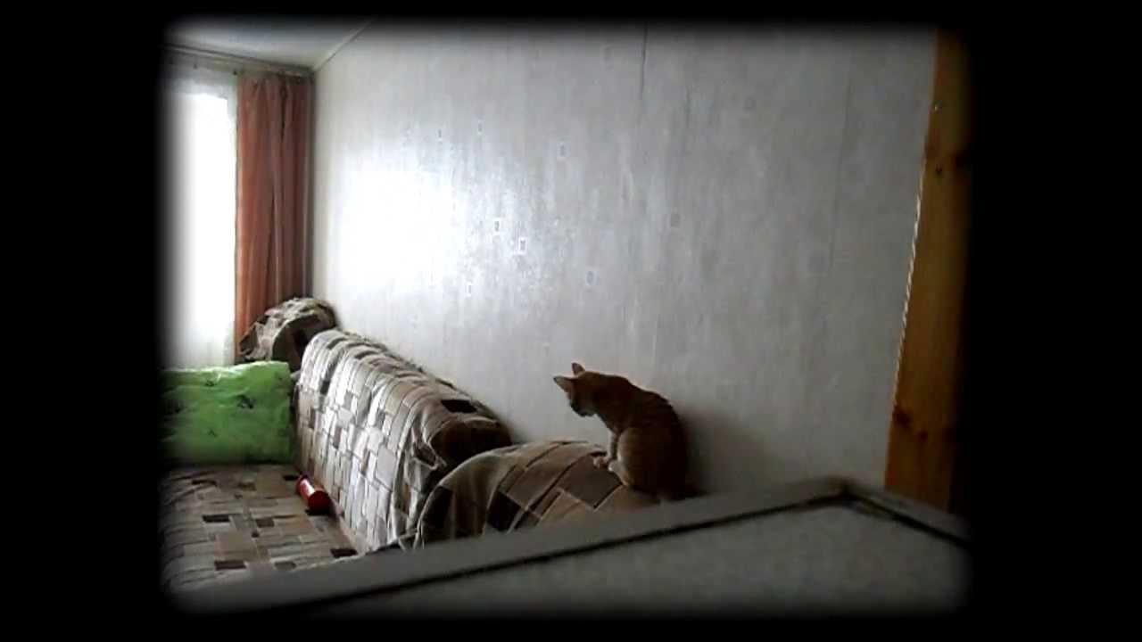 скрытая камера в квартире фото - 12